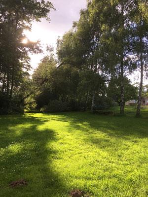 Sonne auf der Liegewiese