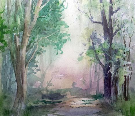 Waldmotiv nach Sommerregen