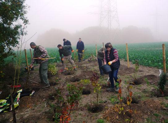 Insgesamt neun verschiedene Heckensorten haben wir gepflanzt. (Foto. J. Spatz)