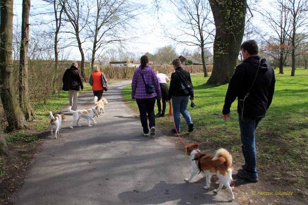 Spaziergang (Benny, Jette, Kabou, Baila & Iko)