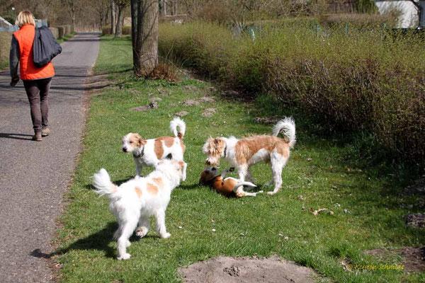 Jette, Kabou, Anton & Benny