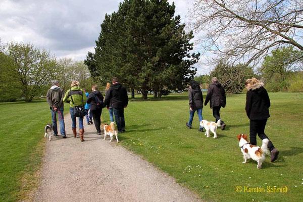 Spaziergang: Ayko, Baila, Jette & Janne