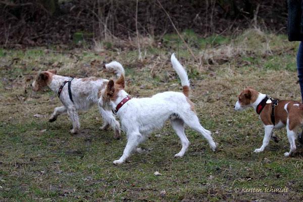 Eyla, Leo & Anton