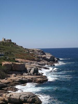 La côte depuis Calvi