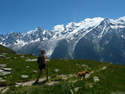 En descendant de l'Aiguillette des Houches (face au mont Blanc)