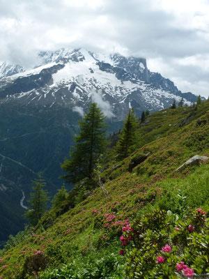 L'aiguille Verte depuis la montée au lac blanc
