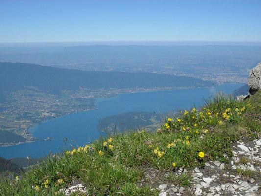 Vu du Lac en montant