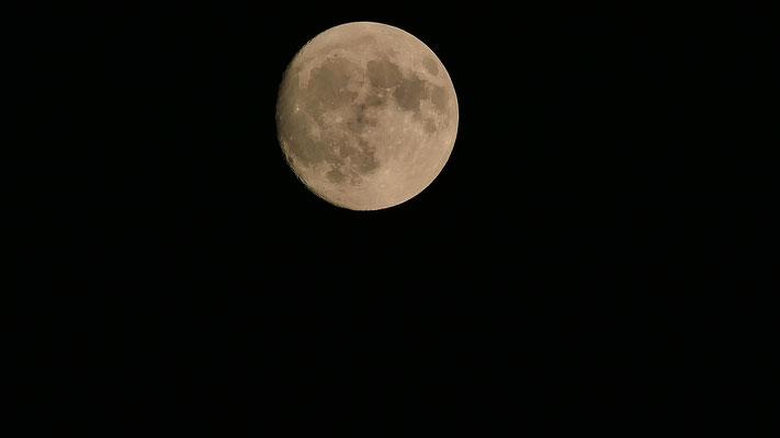 Pleine lune du 26 octobre 2017 (J-1)