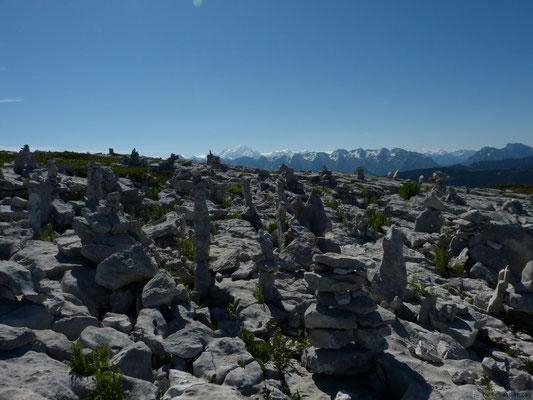 En montant à Sous-Dine (Face au Mont Blanc!)