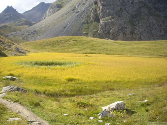En montant au col du Chardonnet (2638m.)