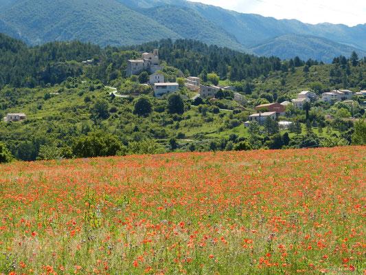 Village de St Jurs (Plateau de Valensole)