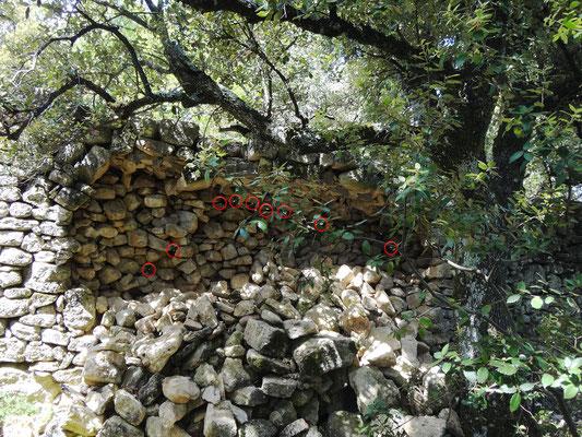 Mur de clôture, vu de l'intérieur,  à l'ouverture du chantier. Les petits ronds rouges correspondant à des vides de parement. Il n'existe plus aucune profondeur de maçonnerie de pierre. On réalise alors la fragilité du mur et le risque d'éboulement.