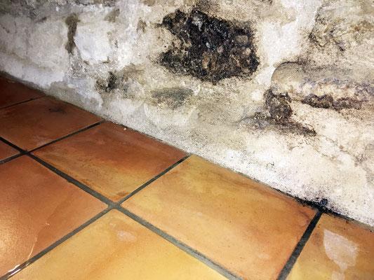 Les maçonneries des soubassements sont affectées par le salpètre et génère l'évacuation de différents sels