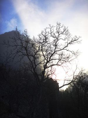 Notre-Dame du Roc au petit matin en hiver...