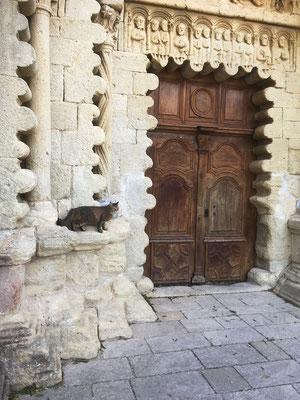 Câline inspecte les lobes et les colonnes des chapitaux du portail