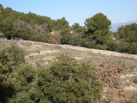 Intégration parfaite de la pierre sèche dans le grand paysage au moment de la reprise (élévation et couronnement)
