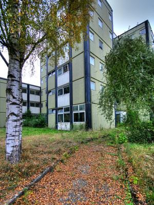 patina · #5_vor_zwölft · 2009-09-29-025 · yak © 2009 RK