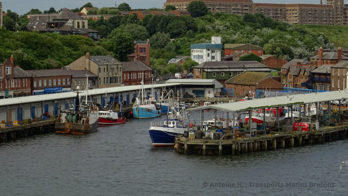 Port de pêche de North Shields. Photo Antoine H.
