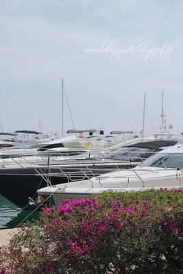 Lieblingsidee Mallorca Puerto Portals