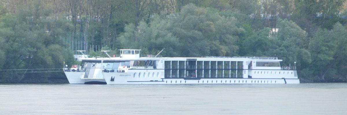 Kreuzfahrschiff Primadonna (ehemals Delphin Queen Deggendorfer Werft)
