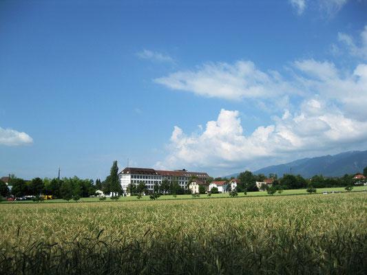 Mietwohnungen Solothurn und Umgebung - auch in Langedorf hat es freie Mietwohnungen