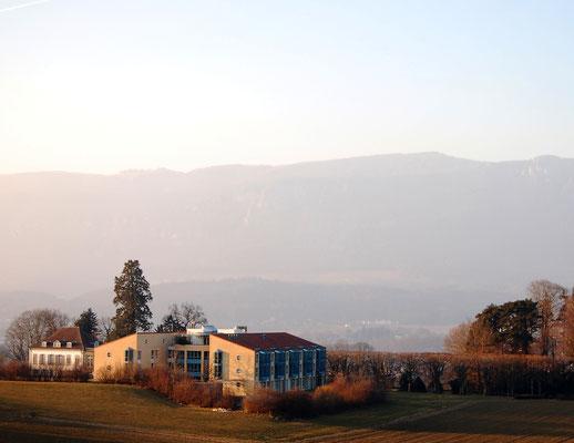 Firmenausflug mit Weingutbesichtigung und Apfelplantage