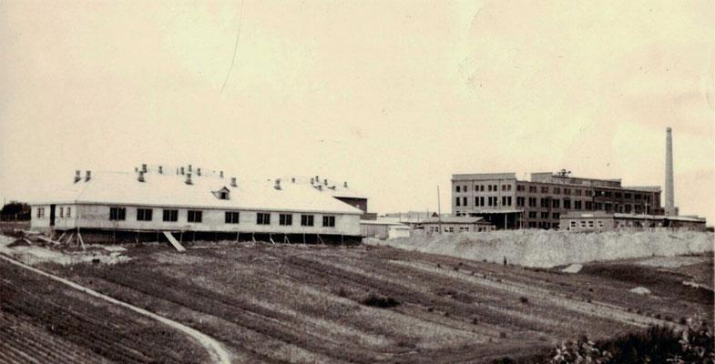 Строительство Звенигородского хлебокомбината, 1956г.