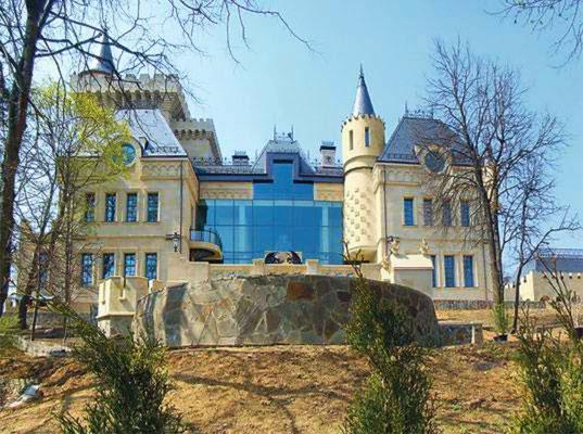 Замок М.Галкина, деревня Грязь