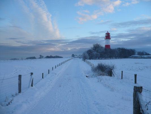 Ein Wintertag mit Schnee