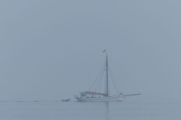 Windstille und Nebel