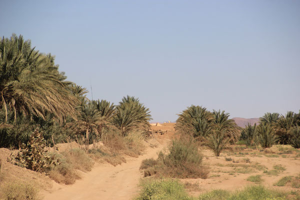 Oued Rheris, Feinsand