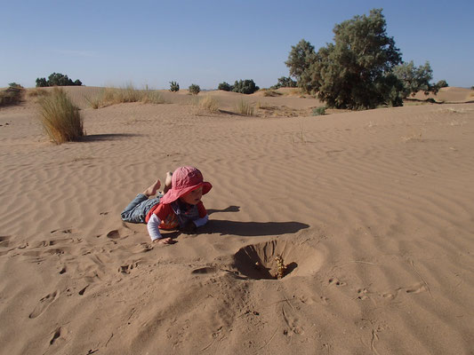 Sarah an von Tier ausgegrabener Pflanze Nähe Standplatz 3