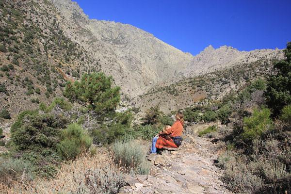 Weg zu La Mira 2345  m