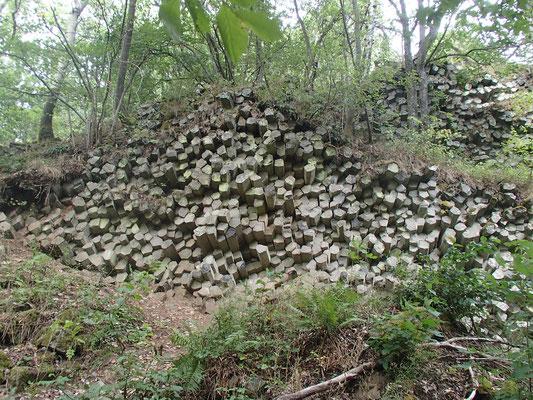 Wanderung in der Rhön Basaltprismen, Gangolfsberg