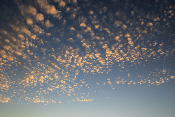 Schäfchenwolken vor dem zu Bett gehen