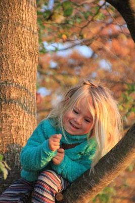 Herbststimmung am Ammersee