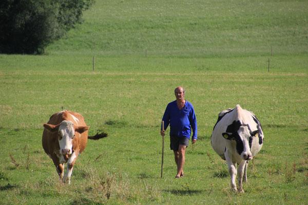 Martin beim Viehtrieb