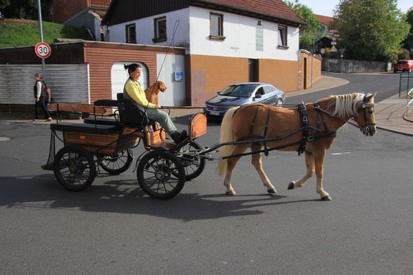 Kutsche in Tann/Rhön
