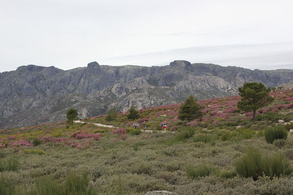 Portugalracing in der Sierra Estrella