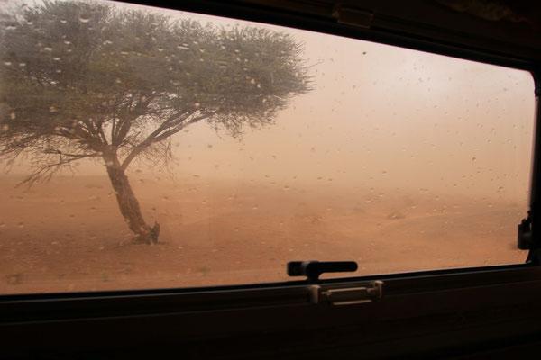 Sandsturmgewitter am Stpl. 2
