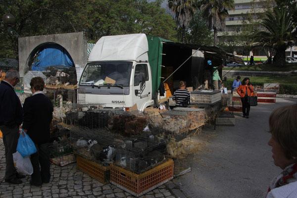 Geflügelmarkt, Tomar