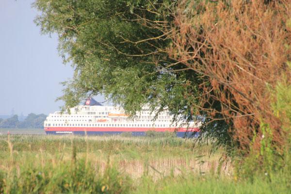 Elbschiffahrt bei Glückstadt
