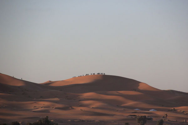 Touristen auf den Dünen, Erg Chebbie