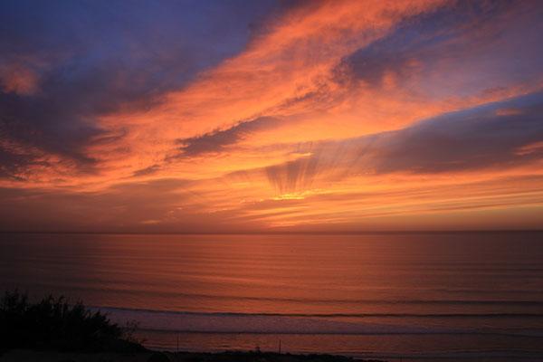 welche eine Wunderwelt, terre de ocean