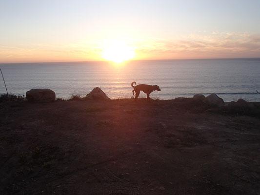 Aragon im Sonnenuntergang