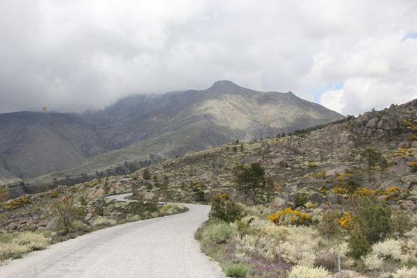 einsame Bergstrasse Richtung Torre, Sierra Estrella