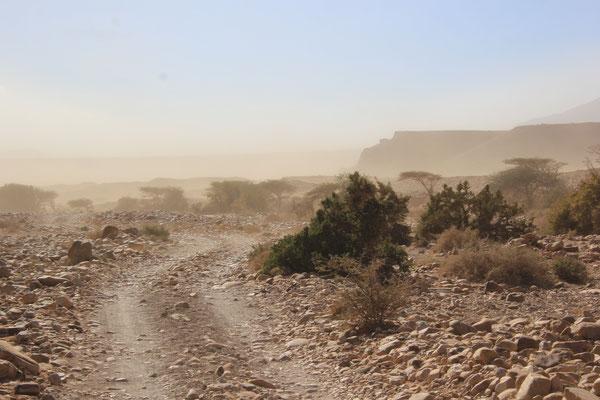 Sandsturm am 3. Stpl. Oued Draa