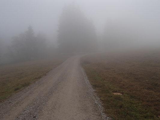 nebliger Wanderweg