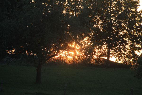 Sonnenuntergang am Bauernhof