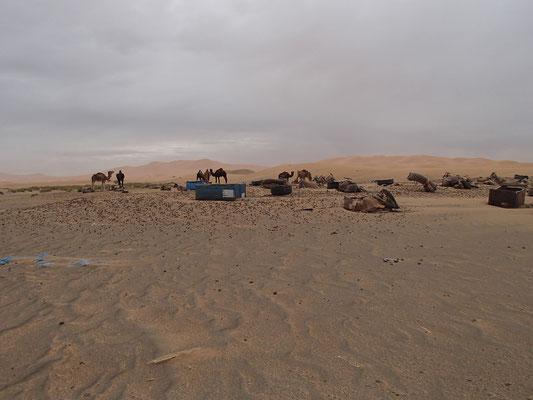 windiger Tag, Etoile le dune